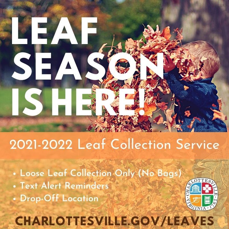 "Promotional Image Announcing that ""Leaf Season is Here"""