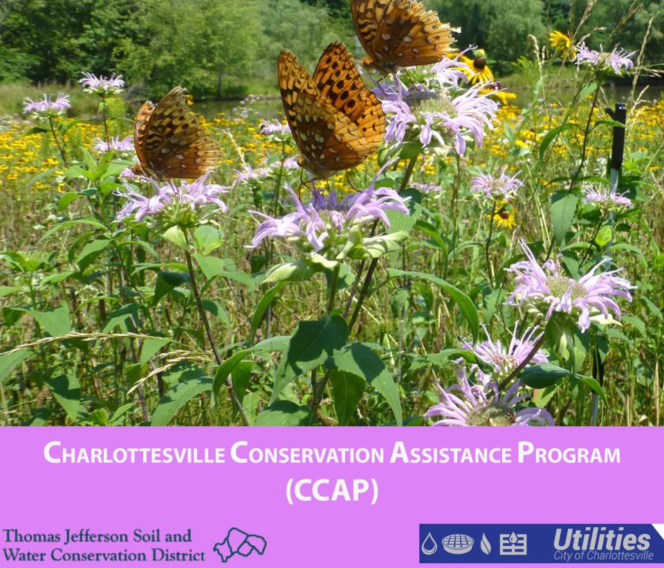 Charlottesville Conservation Assistance Program